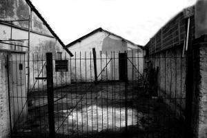 fundo-de-quintal-e-portao-bp-dsc02789